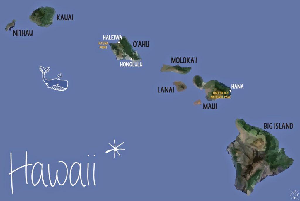 SDTC - HawaÏ Oahu (1)