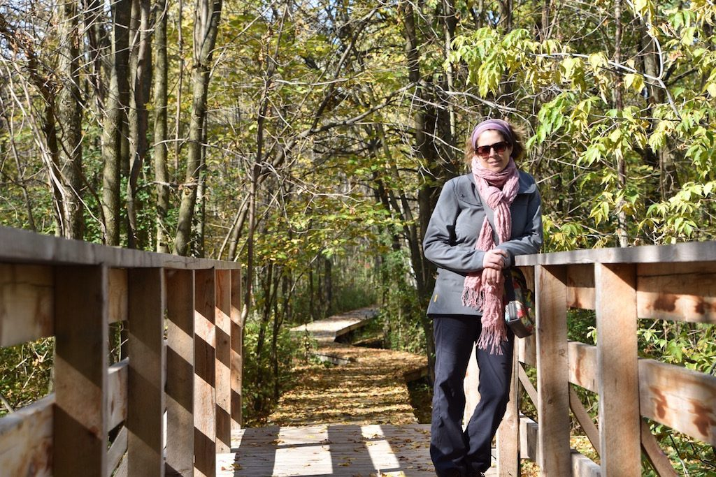 sdtc-promenade-dans-les-bois-7